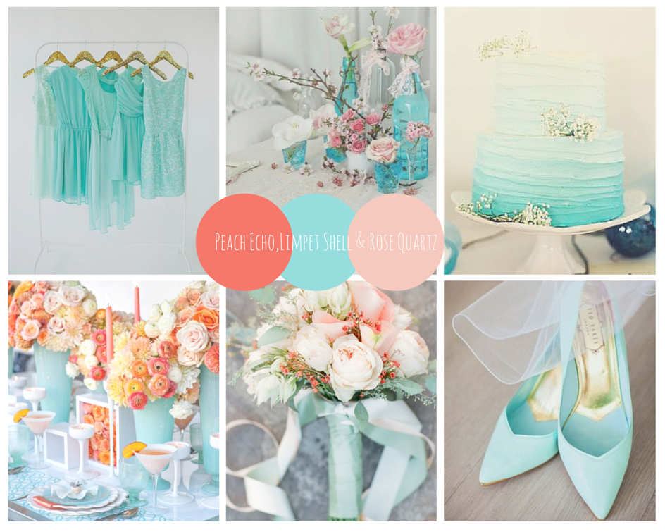 dream wedding palette fashions finest