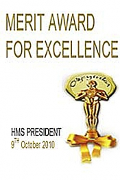 The Merit Awards for Excellence